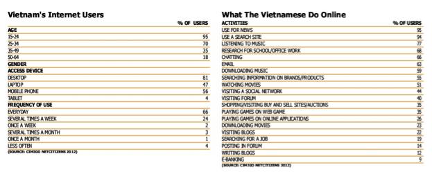 ベトナムネットユーザー詳細